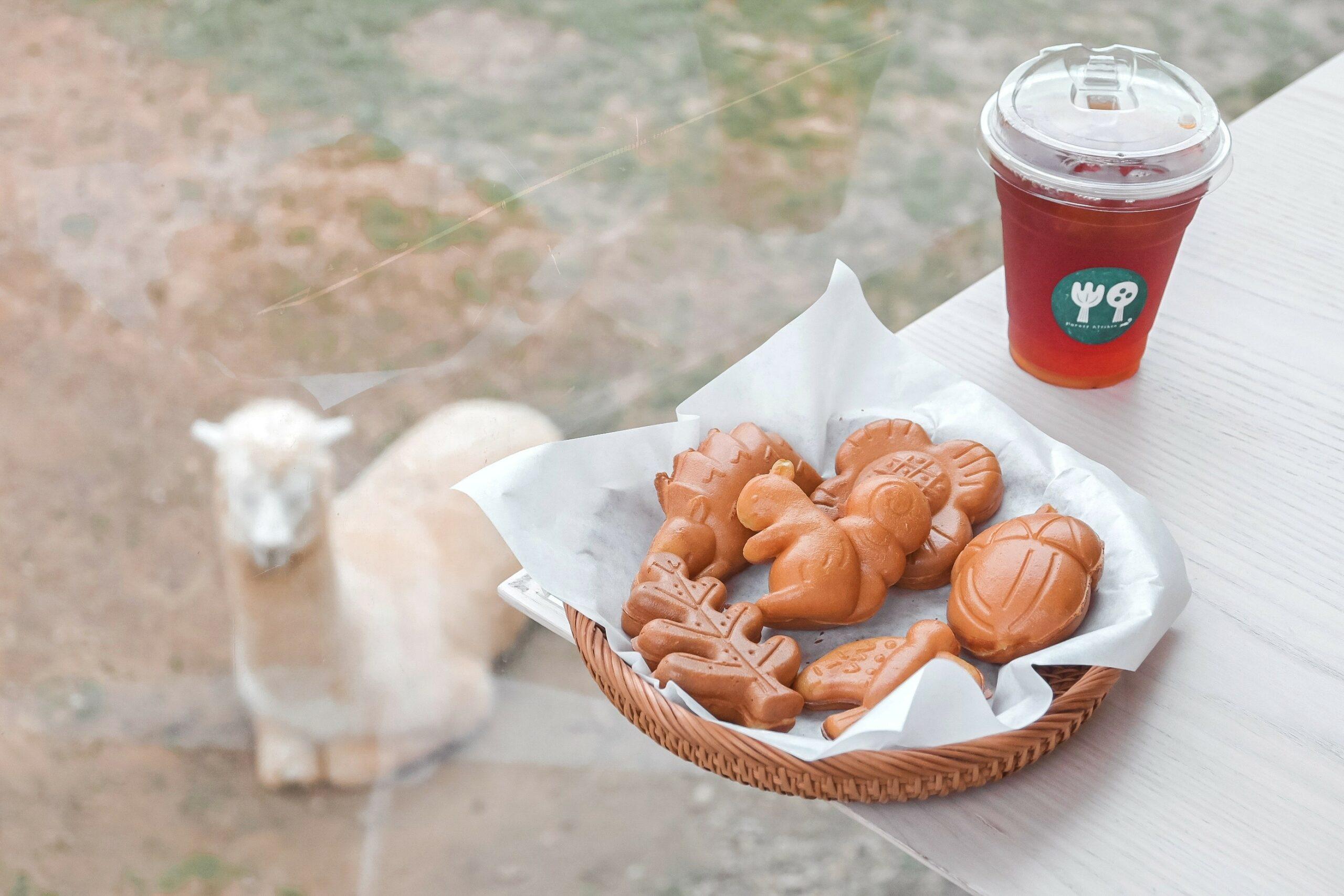 【新竹美食】森林食堂&野餐市集:吃造型雞蛋糕看草泥馬,一整天都好可愛/新竹動物園 @女子的休假計劃